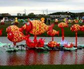 Подорож до New York Chinese Lantern Festival